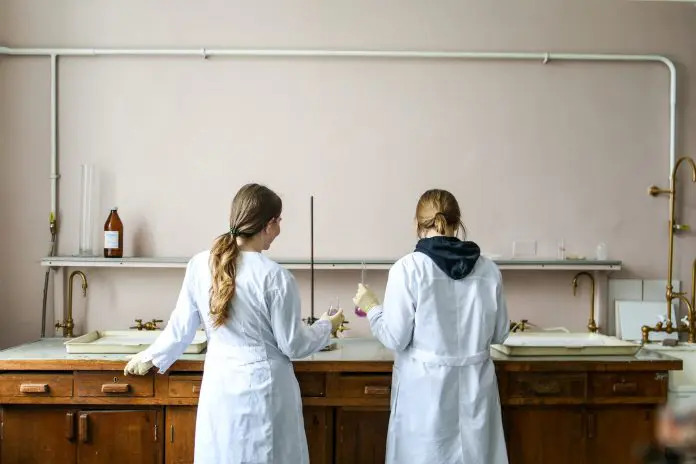 gender gap ragazze nelle STEM